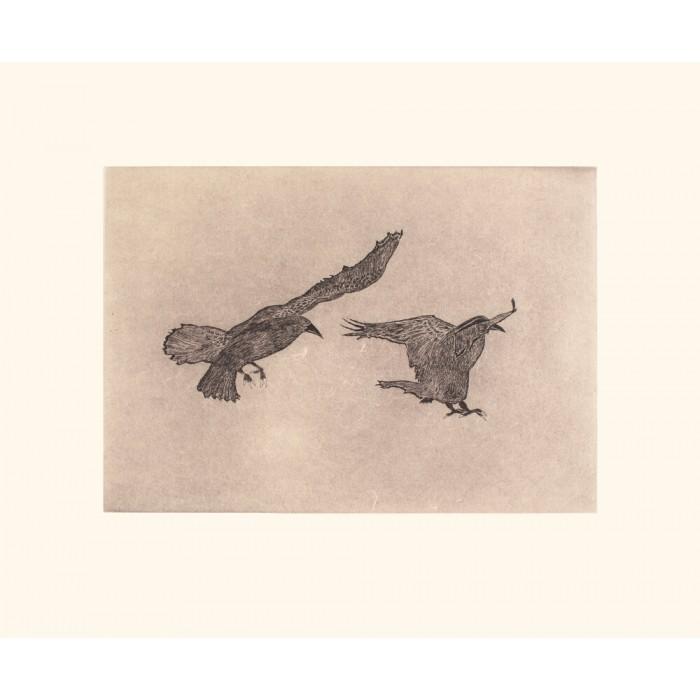 14 - OLOOREAK ETUNGAT 1971 - Misty Ravens